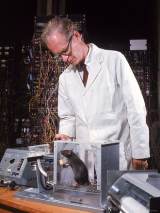 B. F.  Skinner with a rat in a Skinner box